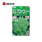 おてがるブロッコリー 緑嶺 約110粒 野菜種子 小袋 サカタのタネの1枚目の写真
