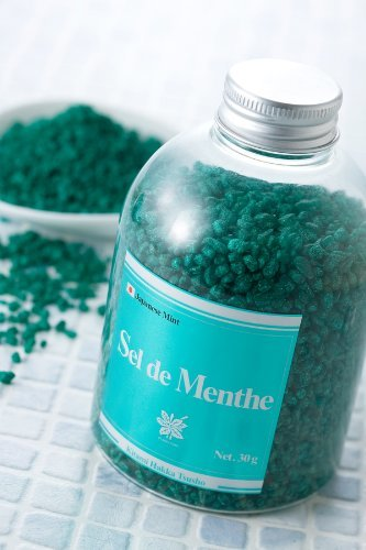 北見ハッカ通商 入浴剤Sel de Menthe徳用ボトル450gの1枚目の写真
