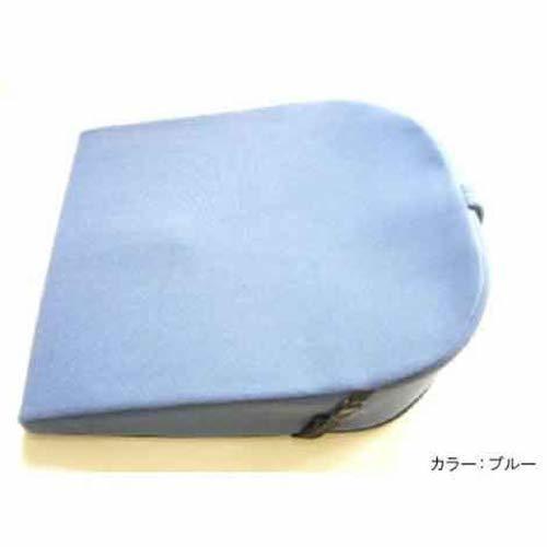 大感謝価格パットナム バランスクッション ポイント寝具 姿勢 健康器具10P03Dec16の1枚目の写真